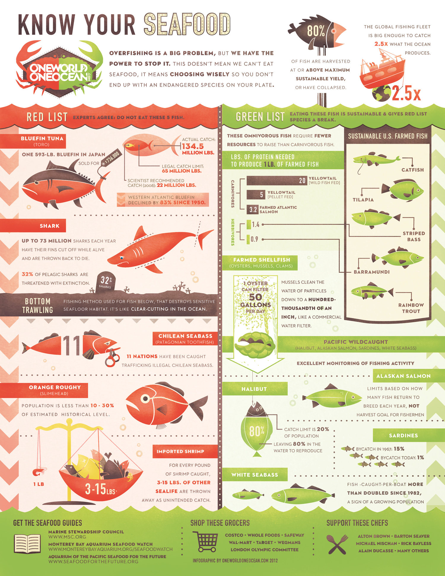 Know Your Seafood Infographic - Click to Enlarge
