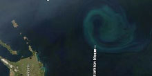 OceanFert_Thumb.jpg
