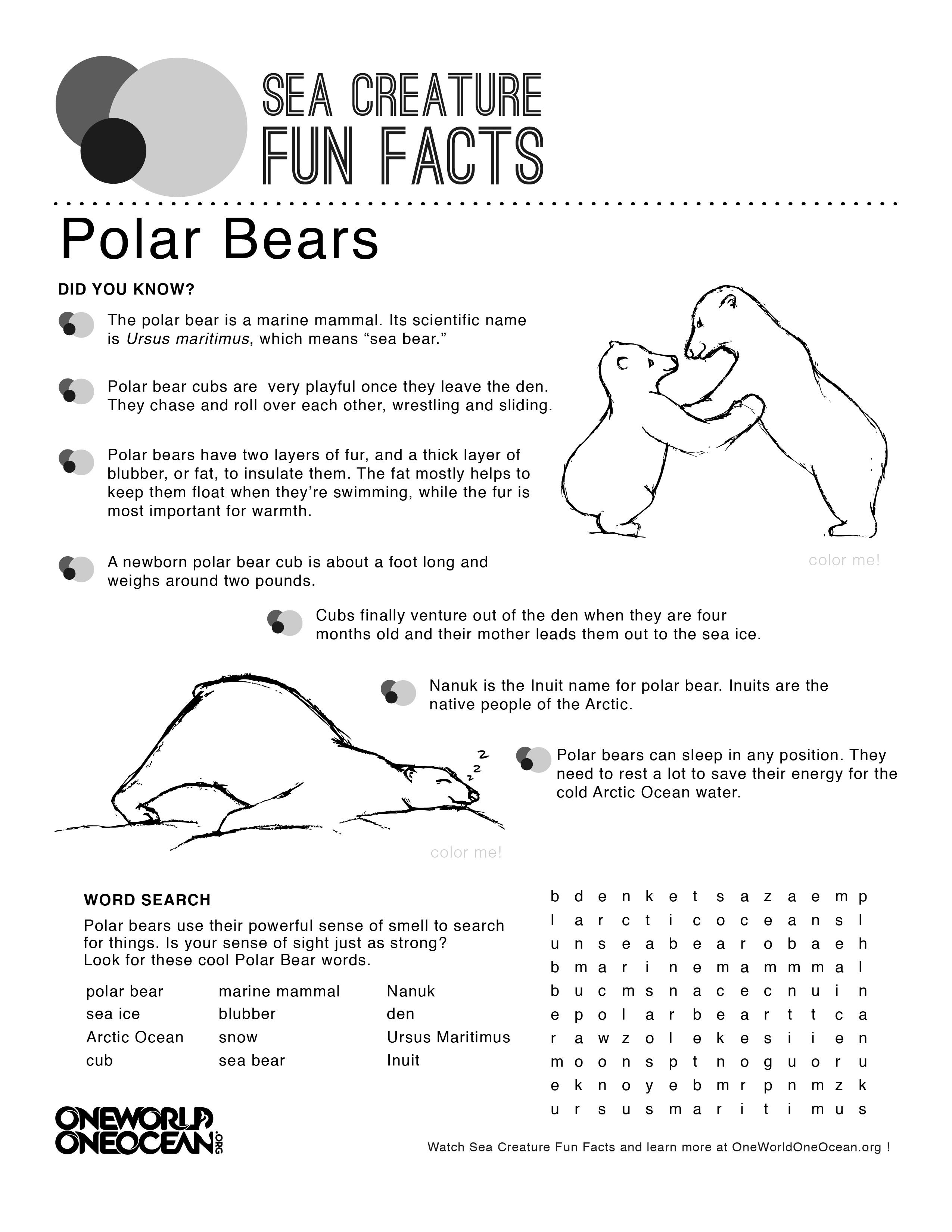 Polar Bear Activity Print