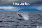photo-of-the-week-happy-leap-year-th.jpg