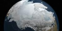 the-school-sea-ice-provides-sea-life-th.jpg